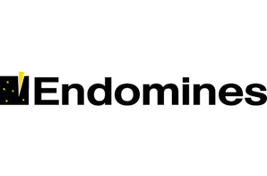Endomines